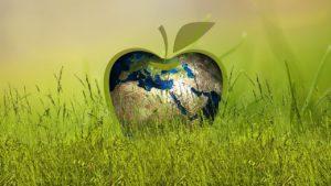 Van groene ambities tot duurzame inkoop